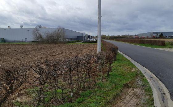 Industrieel terrein te koop in Lanaken